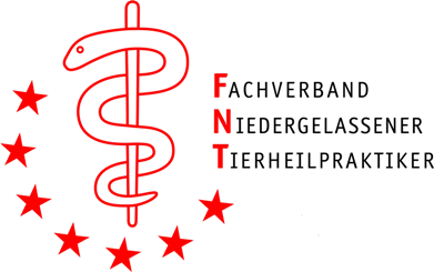 FNT logo transparent 10